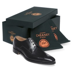 Cheaney Ewan Black Derby