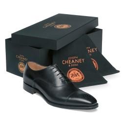 Cheaney Cambridge black oxford